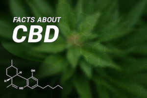 understanding drug tests and cbd oil: A Guide for Human Resources