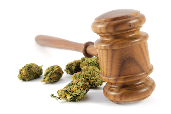 Marijuana Legalization May Cease the Need for Testing