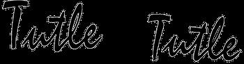 Tutle & Tutle Trucking, Inc. logo